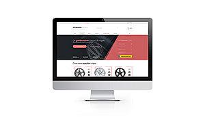 ONTWERP: Webshop (meerdere landen) | Zondag 11 december | € 450-screen-jpg