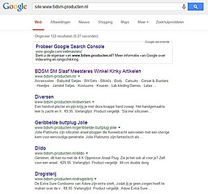 BDSM complete dropshipping webshop www.bdsm-producten.nl NO RESERVE kant en klaar-googleindex-jpg
