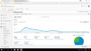 Hoverstore.nl - Webwinkel met omzet (€500), bezoekers en Facebookpagina-printscreen-analytics-png