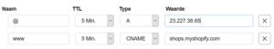 Transip domein naar Shopify-transip-dns-png