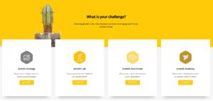 Wordpress design vraag-fireshot-capture-revelx-realizing-growth-https___www-revelx-co_-png